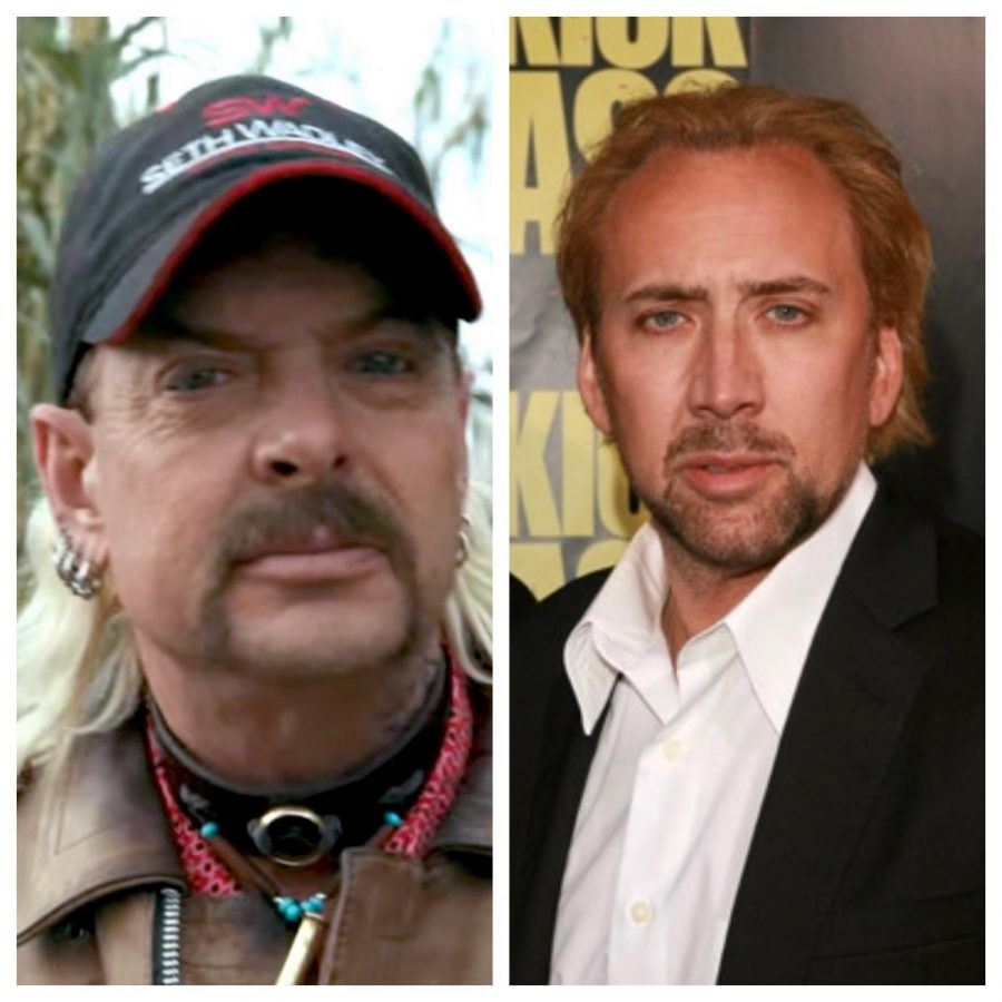 Nicolas+Cage+to+Play+Joe+Exotic+in+New+Scripted+Series%3B+Plus+Fancast